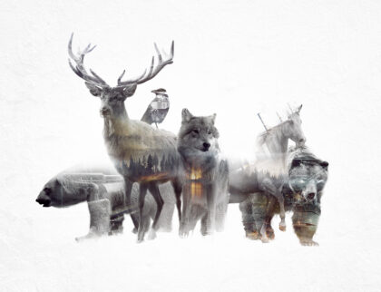 Animated Double Exposure Cinemagraph by Said Dagdeviren 13