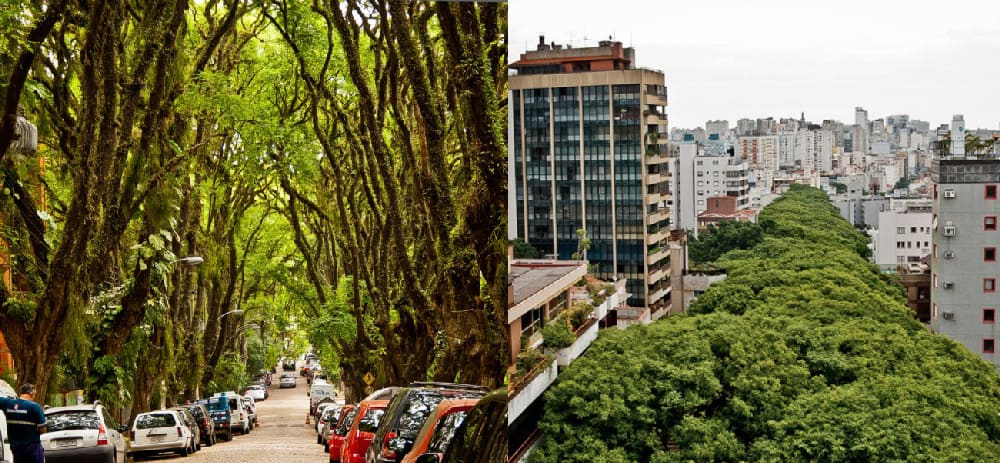 The most beautiful street in the world, Porto Alegre, Brazil