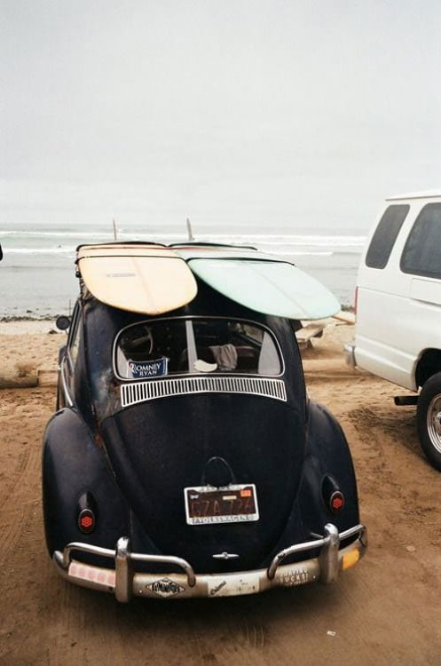 surfs and the original beetle