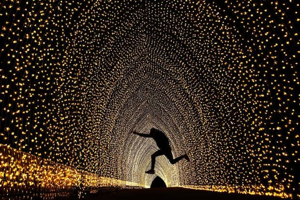 SYDNEY, AUSTRALIA - MAY 25: A poses for a photo inside the 'Cathedral of Light' at The Royal Botanic Gardens on May 25, 2016 in Sydney, Australia. Held annually, Vivid Sydney is the world's largest festival of light, music and ideas. (Photo by Brendon Thorne/Getty Images)